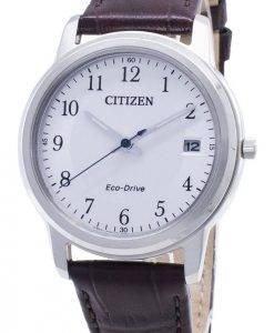 Citizen Eco-Drive FE6011-14A Analog Damenuhr